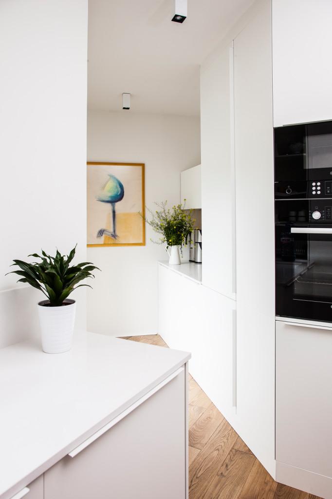 Apartment PZ (2)